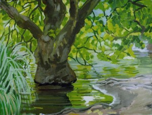 Sycamore in Pond, Golden Gate Park, San Francisco 1997, David Dunn, oil on canvas, 18 x 24 inches